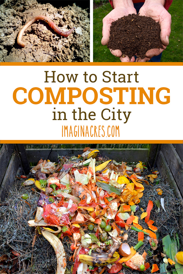 Aiming to live a more sustainable life? Composting not only keeps organic waste out of the landfill, it returns valuable organic fertilizer to the earth. See how to begin composting even if you live in the city.