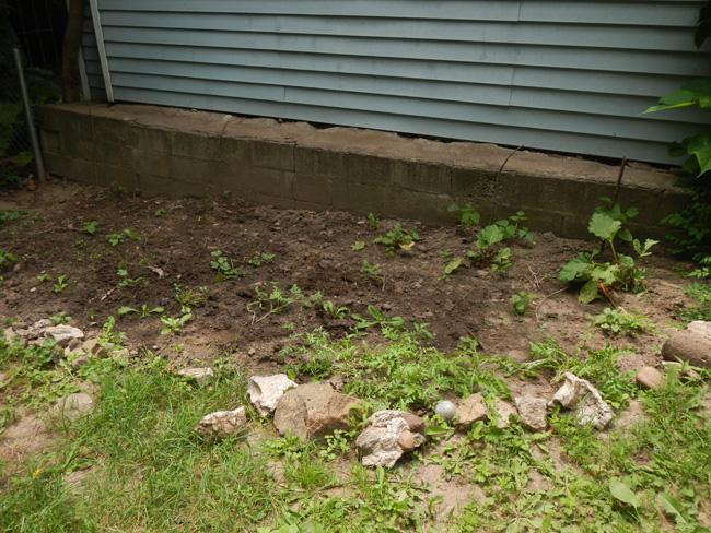 garden failures