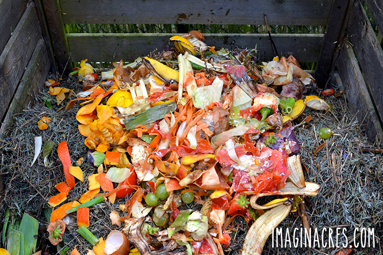 food waste in a compost bin