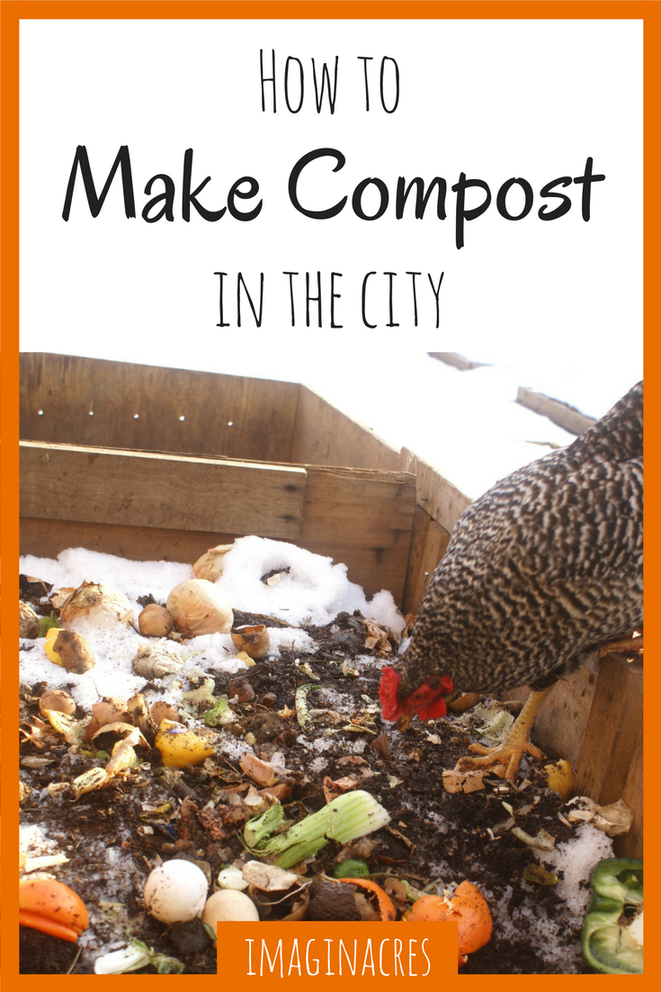 Making compost in the city has it's own challenges, but the reward of gorgeous soil for your garden is worth it!