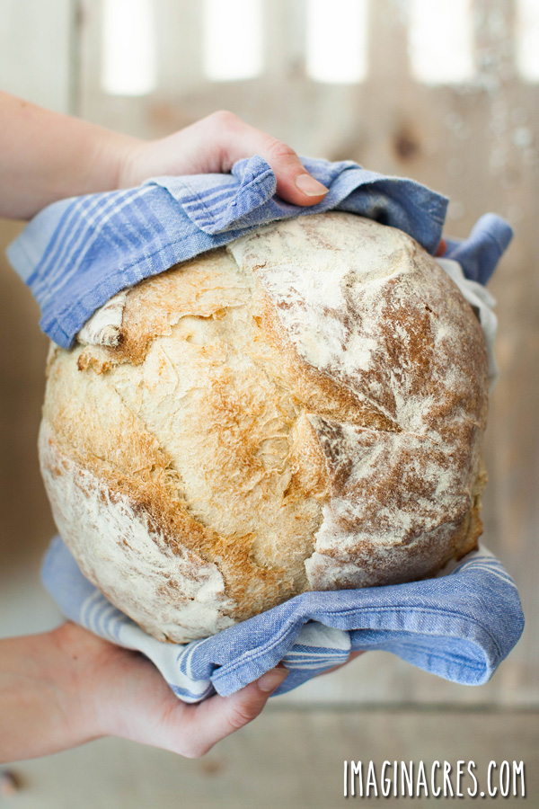 Want to make your own bread? There's just nothing like a warm slice of homemade bread fresh out of the oven. Once you start baking bread at home, you'll never go back to store bought loaves. Here are 10 bread-baking tips to help you make great bread at home.