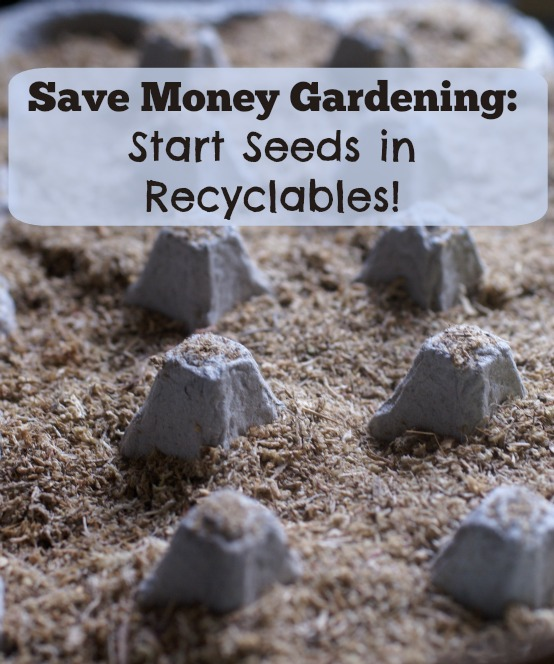 Save Money Gardening:  Start Seeds in Recyclables!