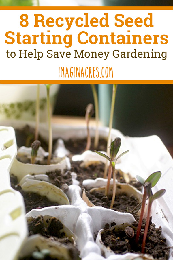 With the unavoidable expense of seeds, seed starter potting mix, and a seedling heat mat, you need to be able to cut costs wherever possible, and using recyclables for starting seeds is a huge help! Here are 8 recycled seed starting containers you can use.