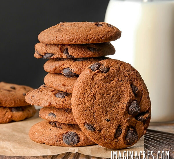 stack of mocha chocolate chunk cookies and bottle of milk