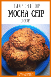 This mocha chip cookies are astoundingly delicious!
