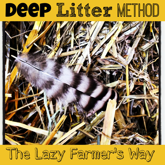 Deep litter method