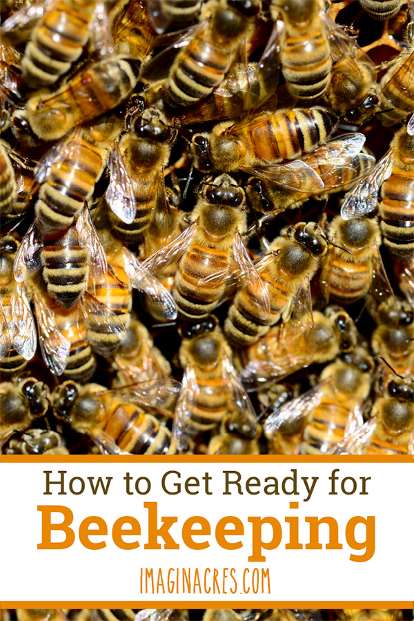 Tips on how to prepare for installing a package of honeybees. Visit to see what to do (and what not to do) when getting ready for your first beekeeping adventure.