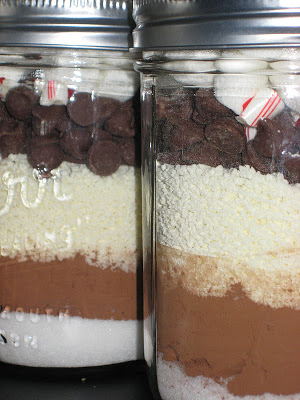 Hot Chocolate in a Jar! Great gift idea! | Ever Growing Farm