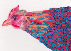 Our Blue laced red wyandotte is gorgeous, I brighten up her colors for her portrait and had some fun with it!