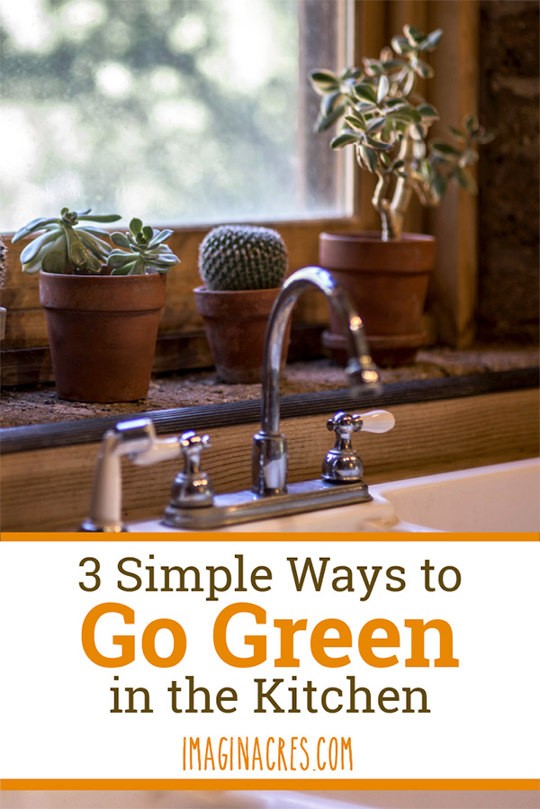 The idea of transitioning every aspect of your daily life in order to live an eco-friendly lifestyle is paralyzing. I know how you feel... believe me, I've been there. Start with these 3 simple ways to go green in the kitchen.