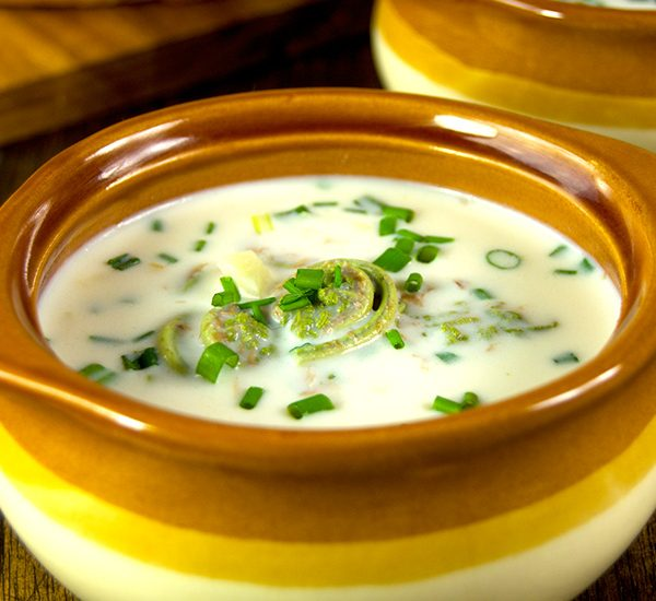 Celebrate the start of the spring foraging season with this creamy fiddlehead soup with chives. A perfect earthy flavored soup for those cool spring evenings.