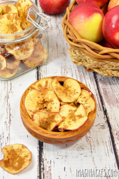 These thin and crispy cinnamon apple chips are a great snack when you are craving something sweet and crunchy.