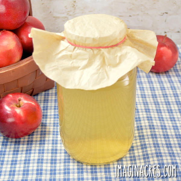 jar of apple vinegar